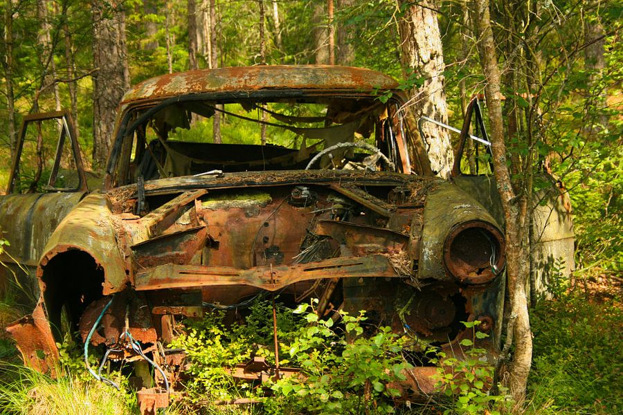 Oude auto in het bos