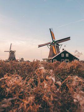 Typische niederländische Windmühlen in Zaanse Schans an einem Sommerabend zur goldenen Stunde von Michiel Dros