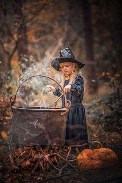 sorcière sur Elke De Proost