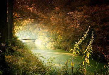 Brücke über schwieriges Wasser von Kees van Dongen