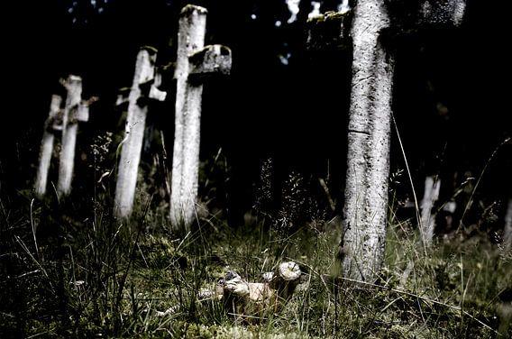 Lost van Photography by Karim