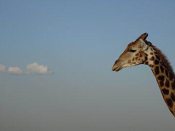 Giraf - Met je hoofd in de wolken von Irma Boonman