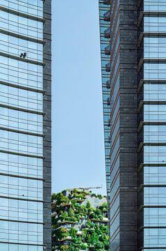 Bosco Verticale Mailand Baumhäuser von altmodern