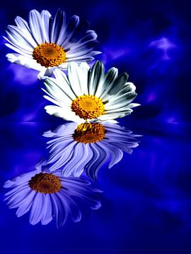 Spiegelung der Blüten van Martina Fornal