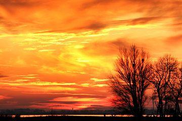 Sky on fire van Bob Bleeker