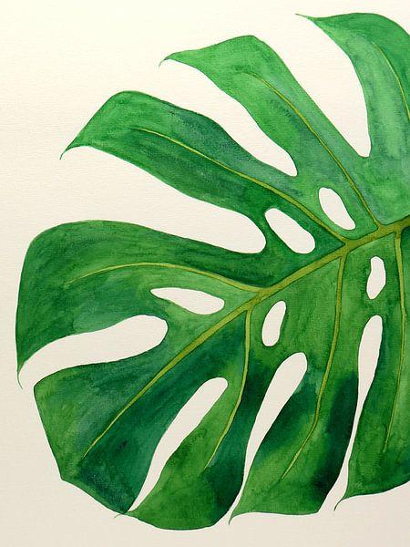 Philodendron monstera blad nr 2 van Natalie Bruns
