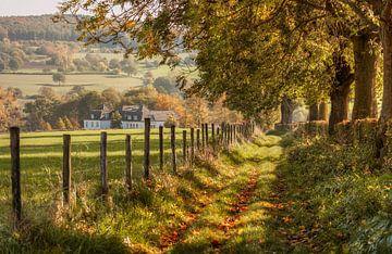Zuid-Limburg in herfstkleuren  van John Kreukniet