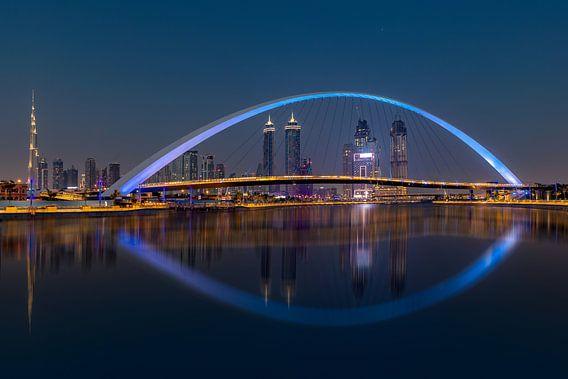 Skyline Dubai from Safapark