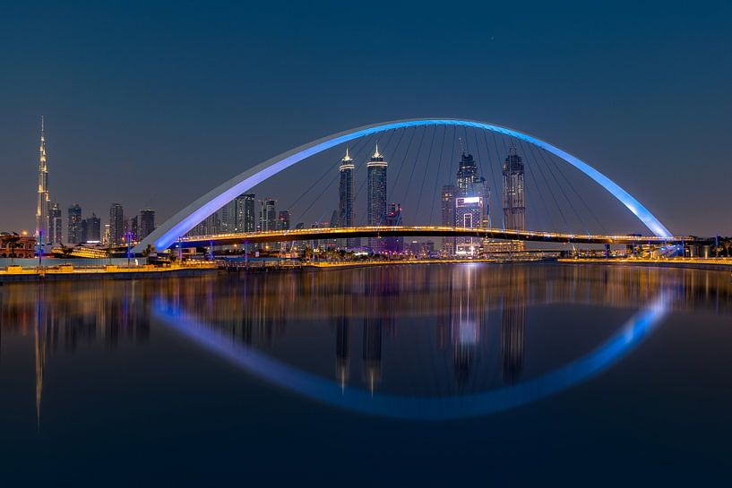 Skyline Dubai from Safapark van Michael van der Burg