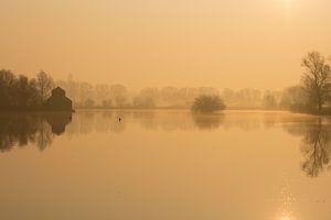 Gouden landschap in de mist