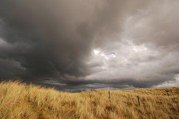 Donkere lucht boven de duinen van Margreet Frowijn