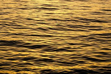 Zonsondergang gereflecteerd op het water von Nynke Nicolai