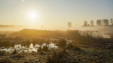 Der Morgen ist angebrochen von Dirk van Egmond