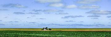 Huisje aan de dijk in kleur van Harrie Muis