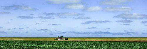 Huisje aan de dijk in kleur van