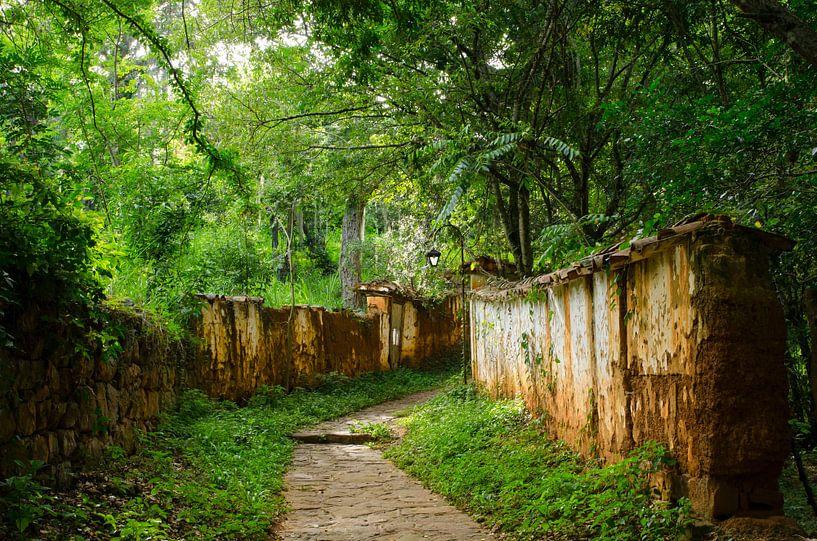 Weg door tropisch bos van Annemarie Winkelhagen