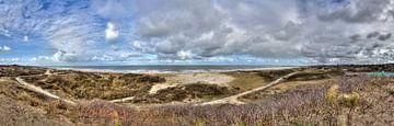 Panorama van de kust van Jan Kranendonk