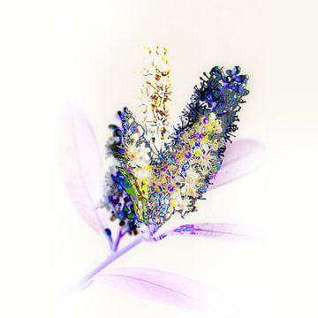 subtiel bloemetje #02 van Peter Baak