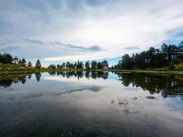 Spiegelung von Bäumen in einem Bergsee von Martijn Joosse