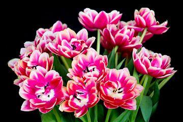 Tulpenstrauß von Henk Langerak