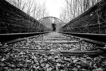 Le chemin de fer vers l'inconnu sur Mark Dankers