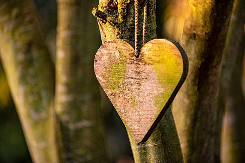Hölzernes Herz in Abendsonne von Coby Bergsma