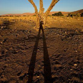Happy schaduw van Eye to Eye Xperience By Mris & Fred
