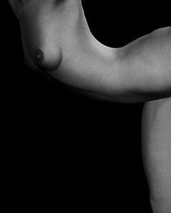 Naakte vrouw – Naakt studie van Jamie No 7