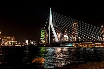 Erasmusbrug Rotterdam van Brian Morgan