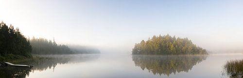 Panorama van meer in de opkomende zon met mist