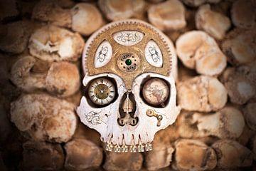 Steampunk schedel van Victor van Dijk