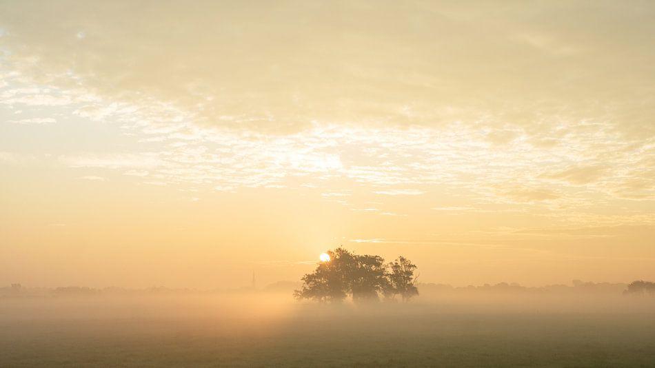 zonsopgang met mist