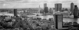 Rotterdam Panorama Vintage