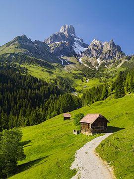 Alpensommer II von Rainer Mirau
