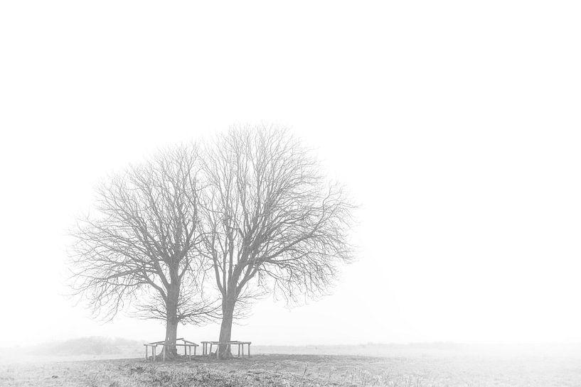 Winter is coming van Marc Arts