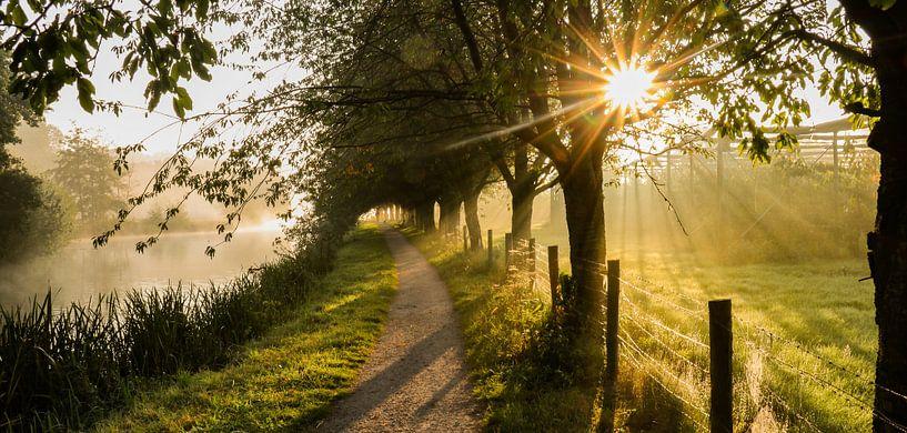 Panorama d'un sentier de randonnée par un matin follement brumeux. sur Arthur Puls Photography