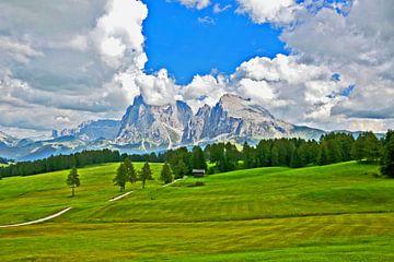 L'Alpe di Siusi dans le Tyrol du Sud