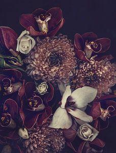 Orchideeën en chrysanten van Marina de Wit