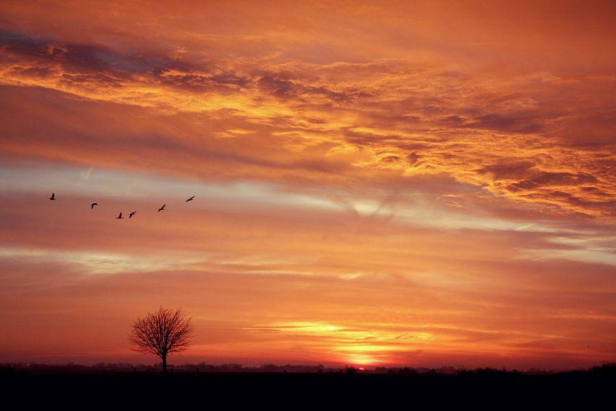 see the sun rising..... van Els Fonteine