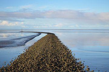 Weg zum Meer von zwergl 0611