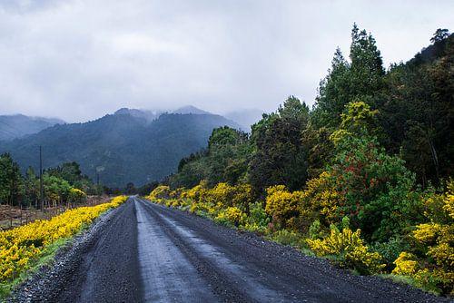 Ruta V-69 - Chili