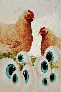 Hühner - Augen