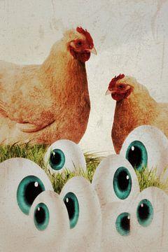 Hühner - Augen van Dagmar Marina