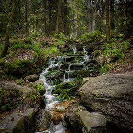 Ninglinspo Wasserfall Ardennen von Wesley Van Vijfeijken