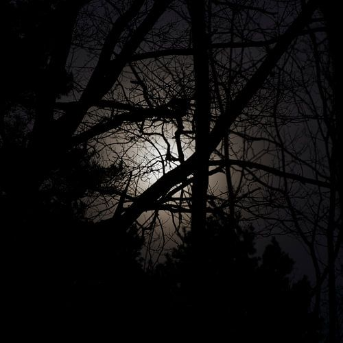 Fearful of the night