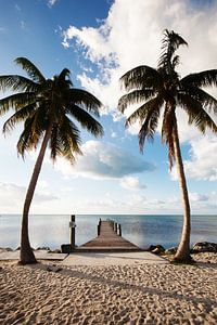 Marathon Florida Keys Amerika van