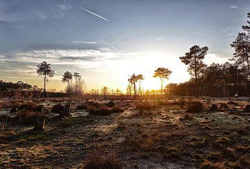 Zonsondergang in het Kempens landschap. van Stefan Peys