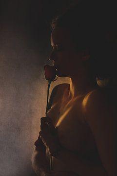 St. George's Rose, Olga Mest van 1x