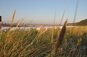 Strandkörbe am Nordstrand in Göhren auf Rügen