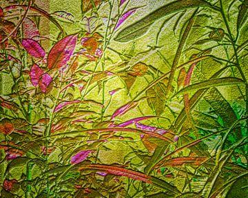 Foliage van mimulux patricia no